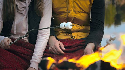 Cover Image for Roasting Marshmallows