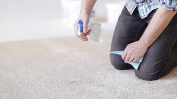 Thumbnail for Man With Rag And Stain Remover Cleaning Carpet