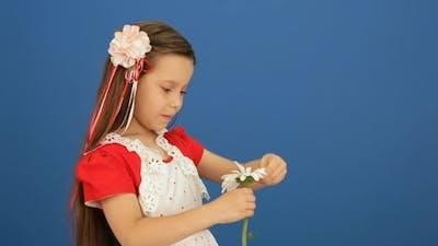 Girl Broke Off The Petals Of A Flower