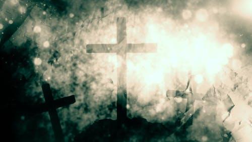 Holy Worship