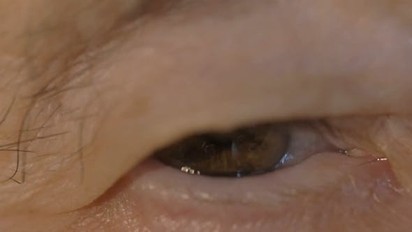 Thumbnail for Brown Eye Of a Senior Woman