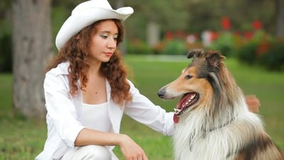 Presentation Of Dogs