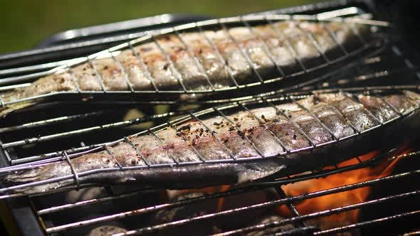 Thumbnail for Tasty Whole Fishes Placed on Barbecue Grill
