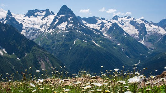 Thumbnail for Capped Mountains in the Snow with Alpine Meadows 5