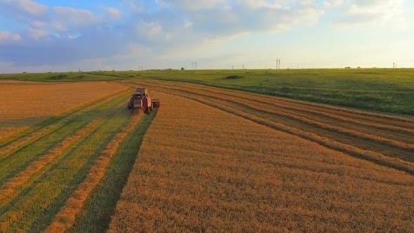 Thumbnail for Aerial View, The Harvesting Machine Mows Wheat