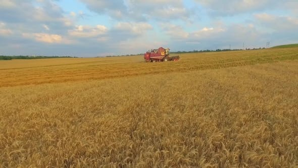 Thumbnail for Aerial View, Combine On Harvest Field In Ukraine