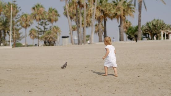 Thumbnail for Little Girl Chasing a Seagull