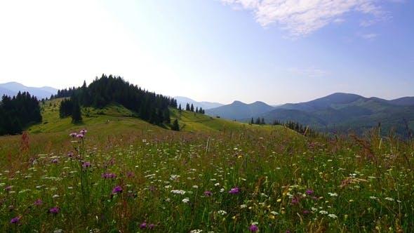 Thumbnail for Mountain Landscape