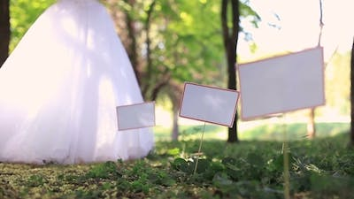 Ceremony In A Park