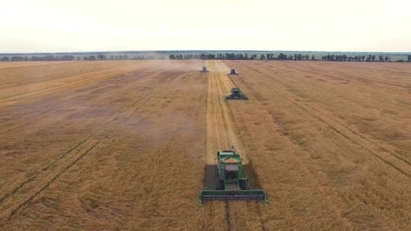 Thumbnail for Aerial Wheat Harvesting