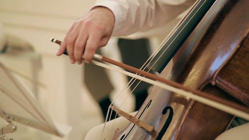 Musiker spielen Das Cello