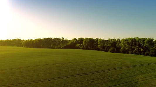Thumbnail for Takeoff Over Big Green Field in Evening
