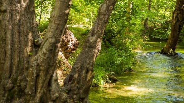 Thumbnail for Tranquil River Flowing In Beautiful Picturesque