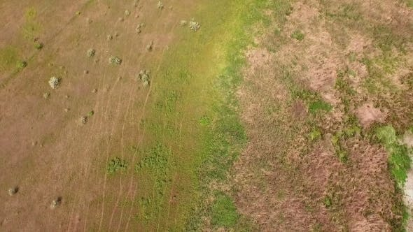 Thumbnail for Flight In Field Camera Tilt Up