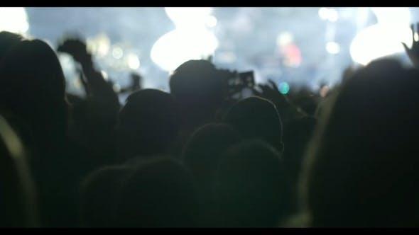 Thumbnail for Public Enjoying The Performance