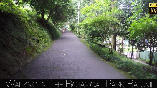 Thumbnail for Botanical Park In Batumi