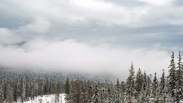 A Strong Winter Snowstorm
