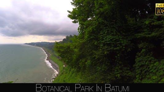 Thumbnail for Botanical Park In Batumi 17