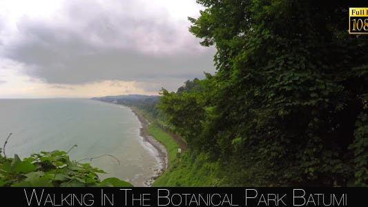 Thumbnail for Botanical Park In Batumi 22