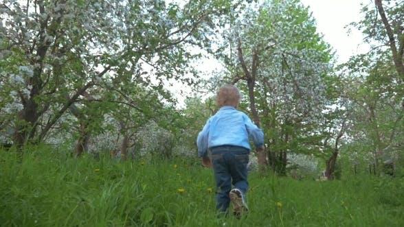 Thumbnail for Boy Walking In The Garden