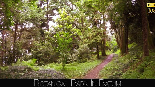 Thumbnail for Botanical Park In Batumi 37