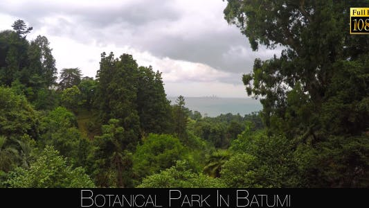 Thumbnail for Botanical Park In Batumi 47