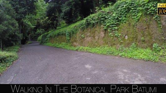 Thumbnail for Botanical Park In Batumi 48
