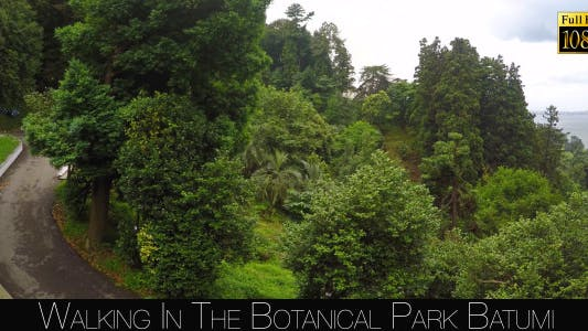Thumbnail for Botanical Park In Batumi 49