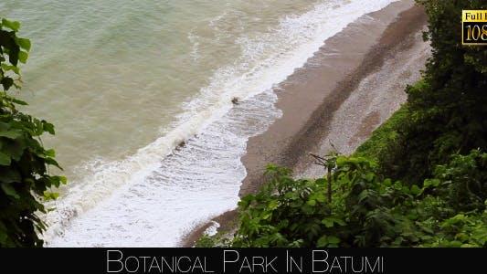 Thumbnail for Botanical Park In Batumi 52