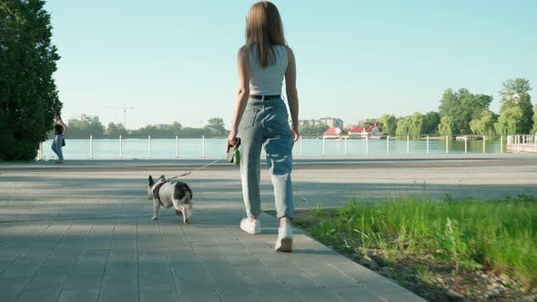 Thumbnail for Unrecognizable Woman Walking with French Bulldog in Park.