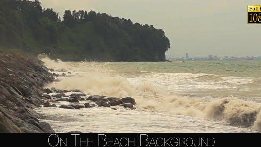 Thumbnail for On The Beach 17