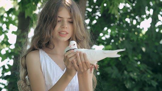 Thumbnail for Fly My Bird