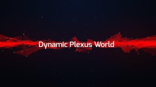 Dynamic Plexus World