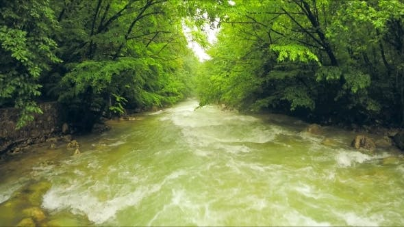 Thumbnail for Calm River Flowing Down Among Lush Greenery In