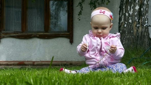 Thumbnail for Seven Month Baby Plays On a Lawn With a Flower