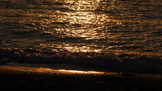 Thumbnail for Seaside and Shiny Sunlight in the Morning Sunrise