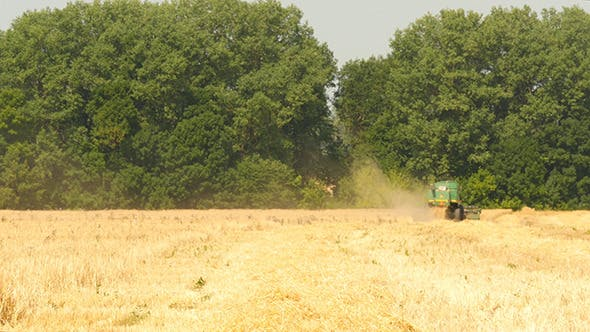 Thumbnail for Modern Combine Harvesting Grain In The Field