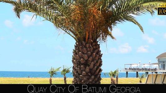 Cover Image for Quay City Of Batumi 7