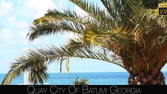 Thumbnail for Quay City Of Batumi 8
