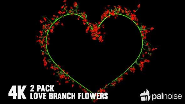 Thumbnail for Flower Love Frames (2-Pack)