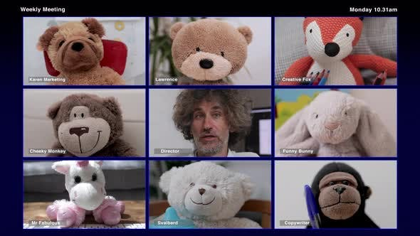 Video of Teddy Bear Video Conference