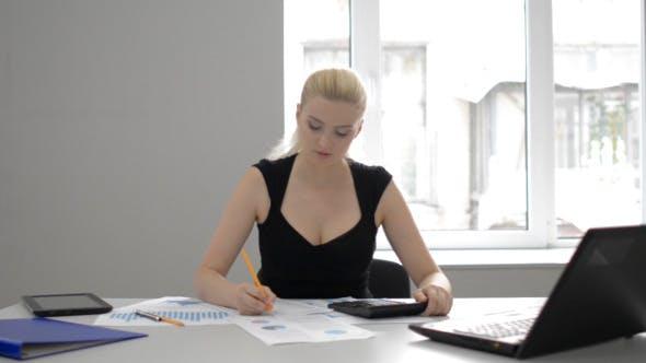 Thumbnail for Businesswoman Financial Work