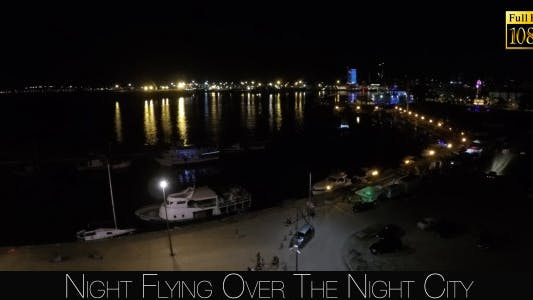 Thumbnail for Night Flying Over The Night City