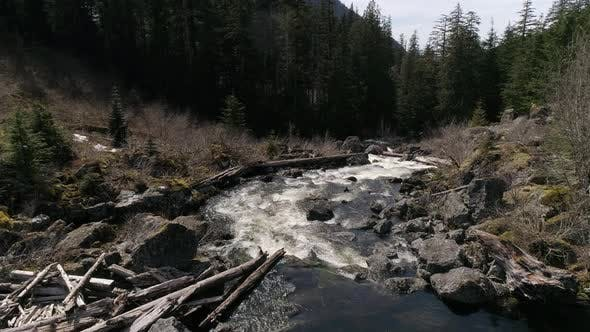 Thumbnail for Fresh Water Stream Drone Perspective On Sunny Spring Day In Washington State Great Outdoors