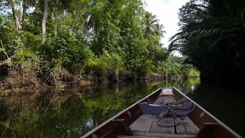 Wooden Boat Cruise Floats In Backwater Jungle In