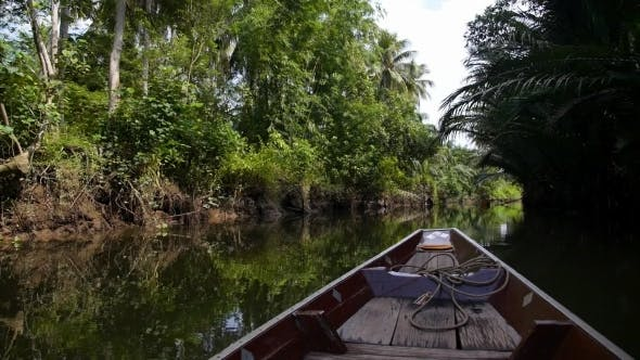 Thumbnail for Wooden Boat Cruise Floats In Backwater Jungle In