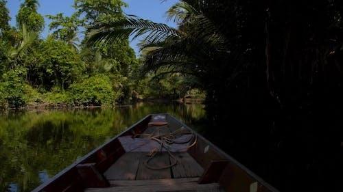 Fisherman Fishing In Amazon Jungle River