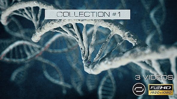 Thumbnail for DNA - 3 Pack - Collection #1