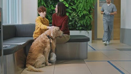 Mother And Son With Retriever At Vet Clinic