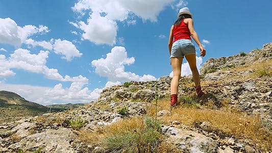 Thumbnail for Mountain Traveler